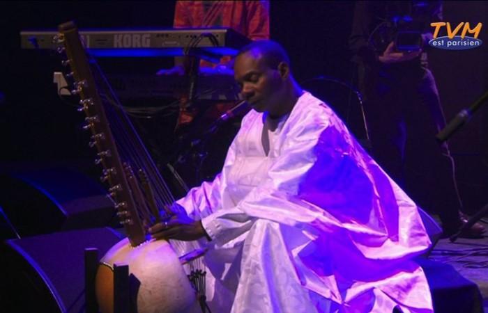 Toumani Diabate live at Banlieues Bleues
