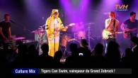 Il a remporté la finale du Grand Zebrock 2014, William le chanteur du groupe  Tigers Can Swim est l'invité de Culture Mix […]