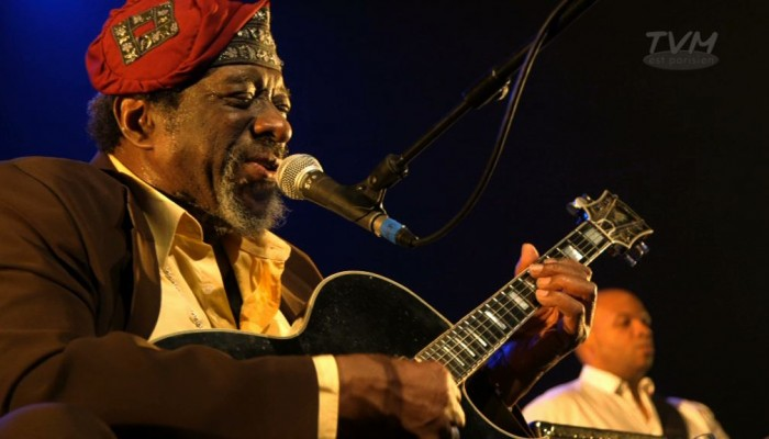 "James ""Blood"" Ulmer – concert Sons d'hiver 2014"
